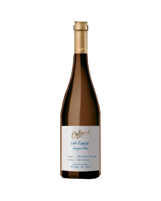 Lote Especial Bodega Colomé (100% Sauvignon Blanc)